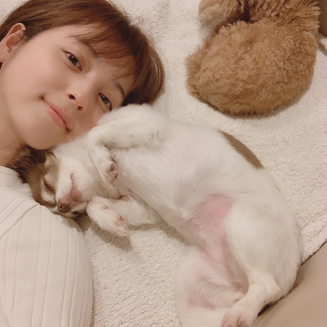【衝撃】佐々木希の妊娠疑惑3つの理由…2