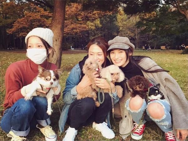 佐々木希の3匹の愛⽝の画像や名前犬種は?なぜテレビや雑誌で大活躍なのか…