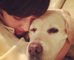 滝川クリステルの結婚報告でのインスタが話題!愛犬の名前や動物愛護団体は?